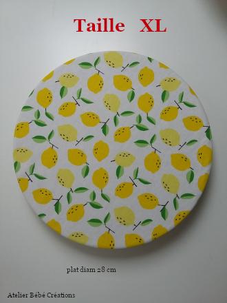charlotte-citrons-jaune-xl3